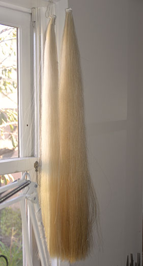 Hair used for violin bows