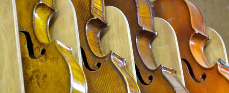 Violins available from Foster's Violin Shop